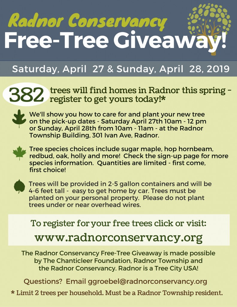 Radnor Free Tree Giveaway (6) (1)