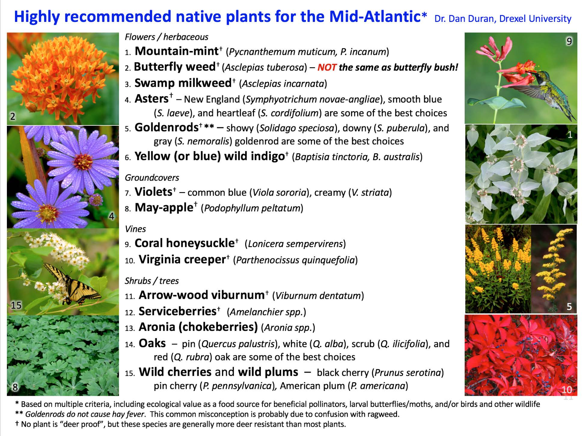 Recommended plants Mid-Atlantic (NEW 2017)